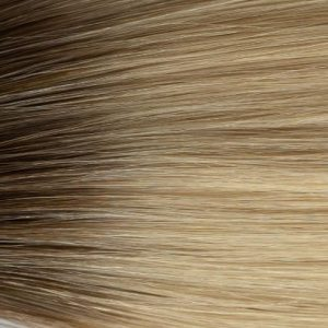 Rooted Blonde #2T60